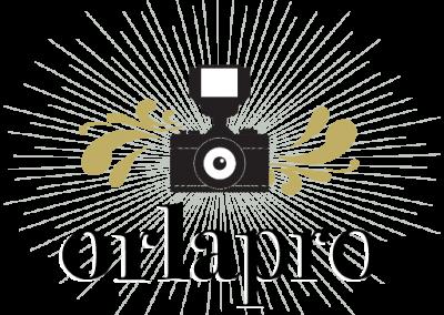 Logotipo Orlapro